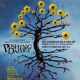 Preview : Pushing Daisies (2)