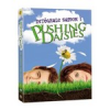 Du 9 au 14 février en DVD : Pushing Daisies, Smallville