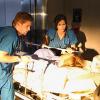 Miami Medical débarque le vendredi 2 avril sur CBS