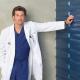 Sur nos écrans : Grey's Anatomy saison 6, Les Experts Manhattan saison 6, 90210, Heroes, Mon Oncle Charlie, Brothers & Sisters…
