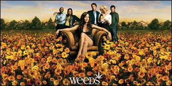 Weeds Saison 2
