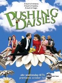 Pushing Daisies Saison 2