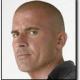 La saison 3 de Prison Break déjà sur M6 (màj)