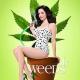 Showtime programme les retours de Weeds et The Big C